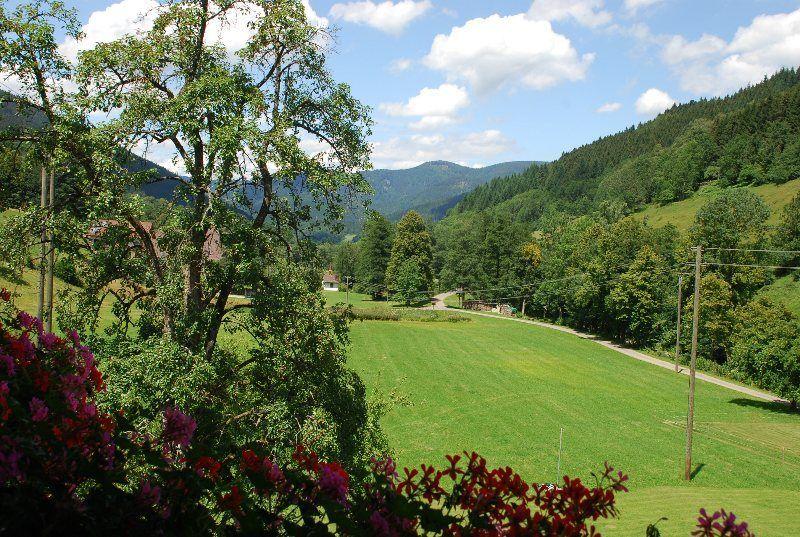 Vista desde la terraza del apartamento