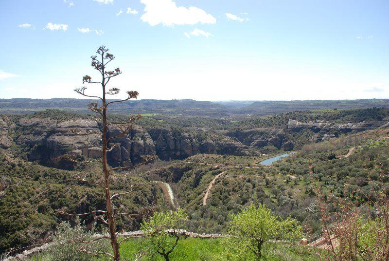 Cañón del río Vero desde Alquézar