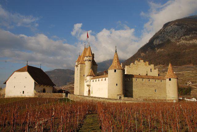 Castillo entre viñedos