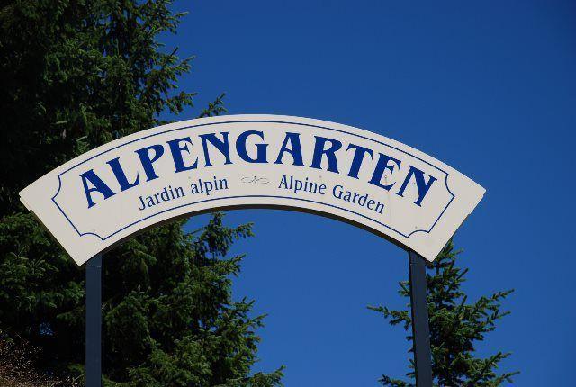Jardín alpino de Schynige Platte