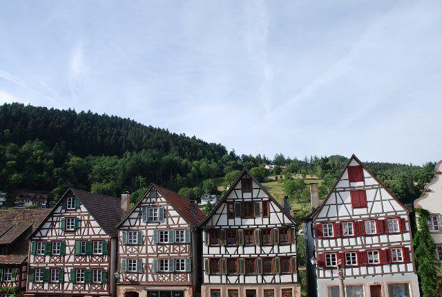Casas y abetos en Schiltach