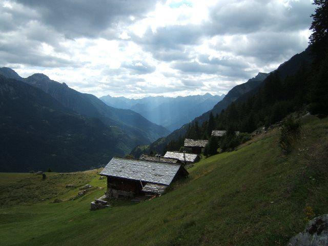 Prado alpino de Alp Tombal
