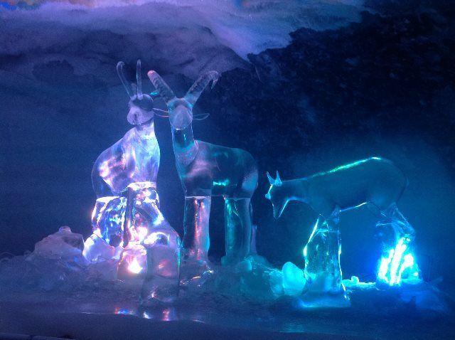 Simpáticos ciervos de hielo