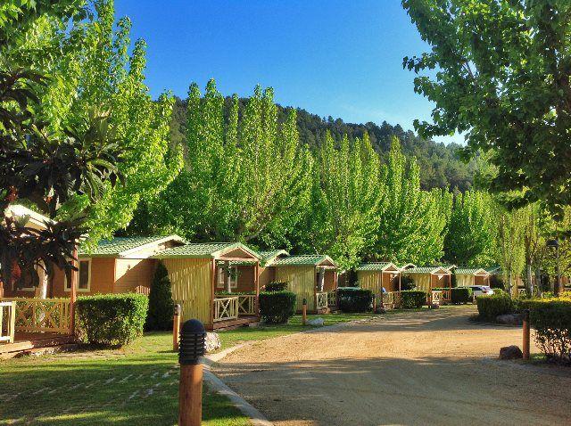 Camping Bassegoda Park: el vergel de l'Alt Empordà