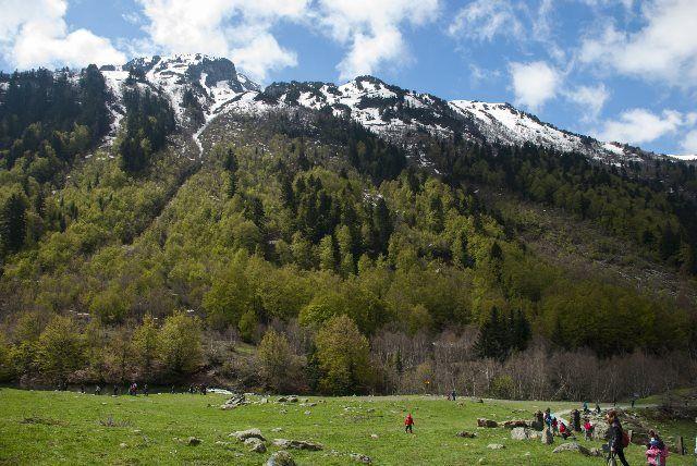 Bosque de Siesso, Vall d'Aran