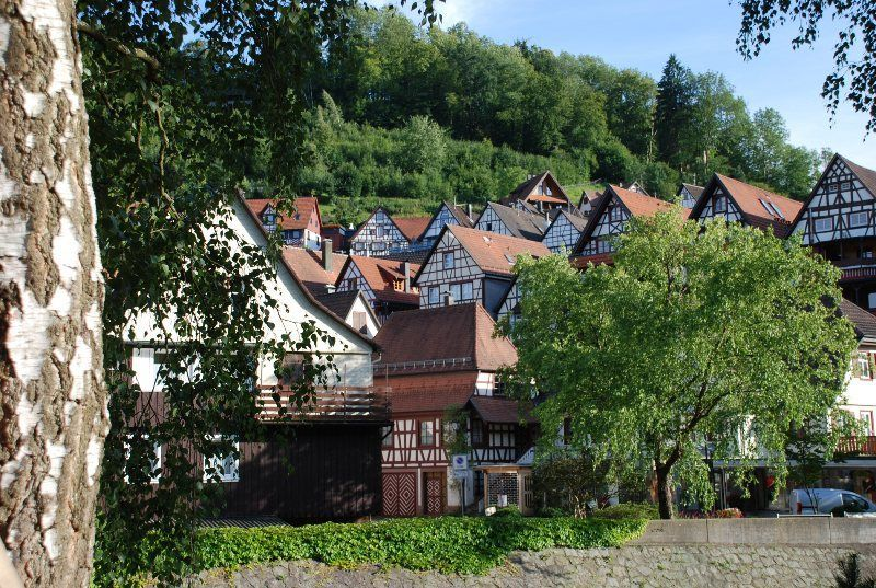 Naturaleza y casas con entramados de madera