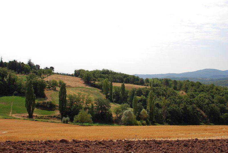 Camino de Anghiari