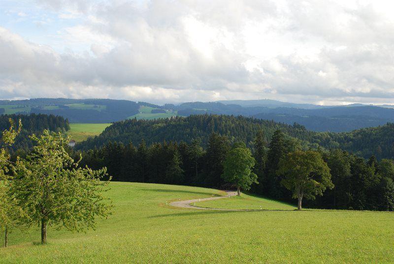 Paisaje cerca de Sankt Margen