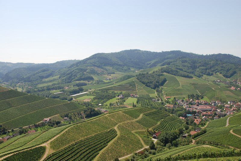 Vistas desde Staufenberg