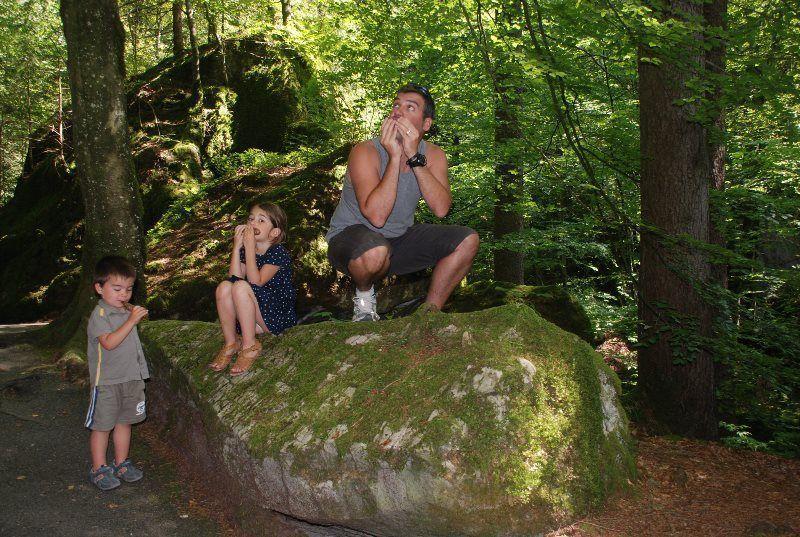 Bosque encantado con gnomos y todo