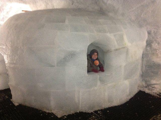 El iglú del pabellón de hielo