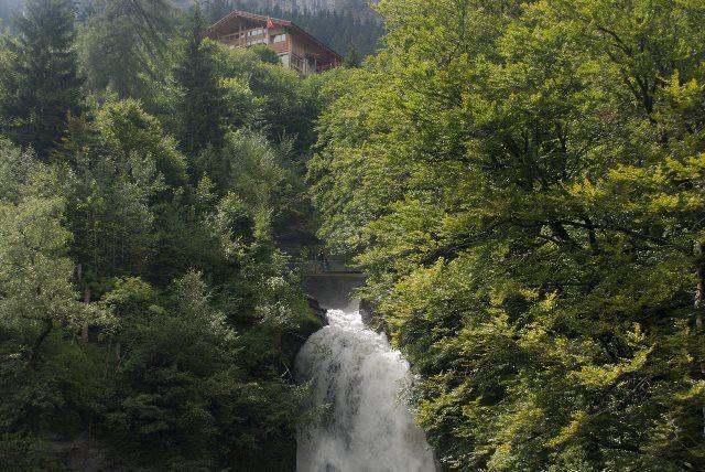 Cascada de Reichenbach