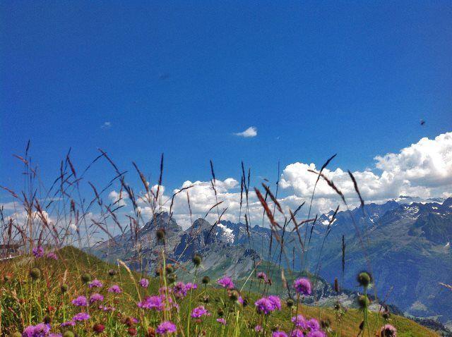 Los Alpes del Berner Oberland oriental