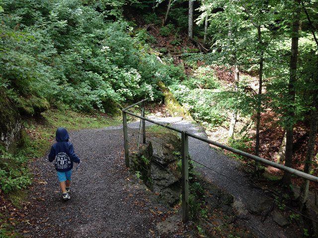 Sendero de las cataratas de Reichenbach