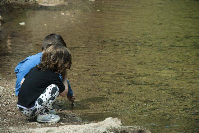 Cazando renacuajos en el río Muga