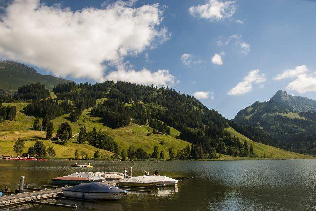 Lago Negro (cantón de Friburgo)