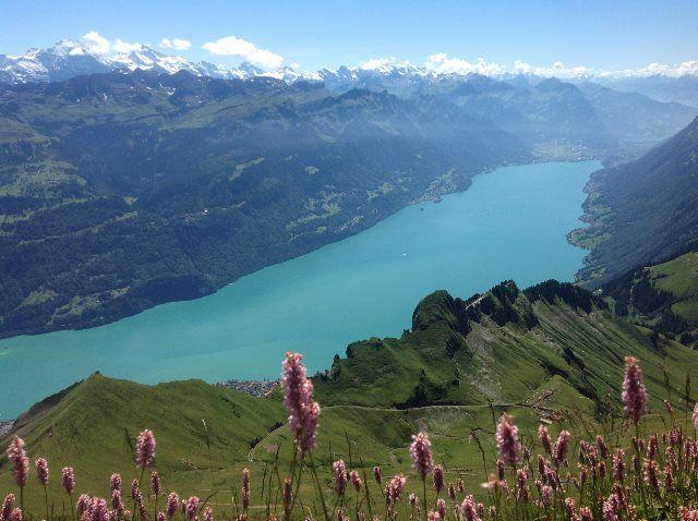 Lago de Brienz y Alpes