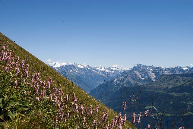 Panoramicas alpinas desde el BRB
