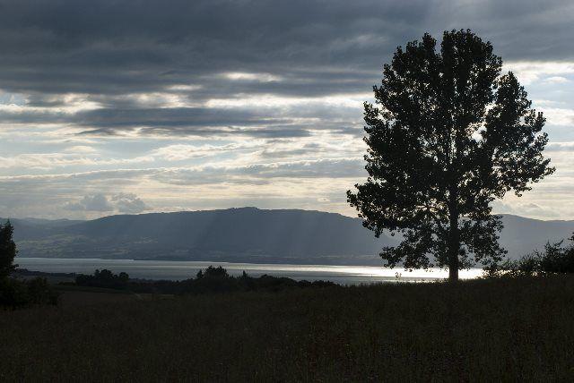 paisaje bucólico del monte Vully