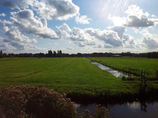 polders de Kinderdijk