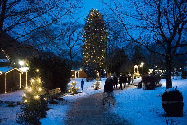 Navidad en el lagoTegern